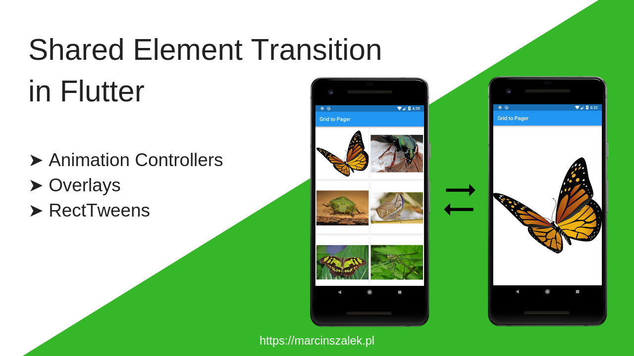 Shared Element Transition in Flutter - Fidev